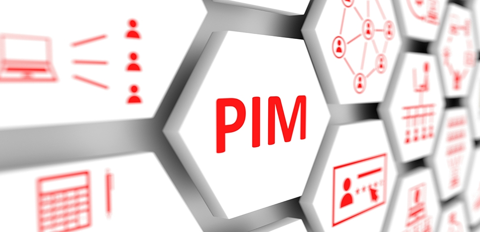 How much does it cost to implement PIM?